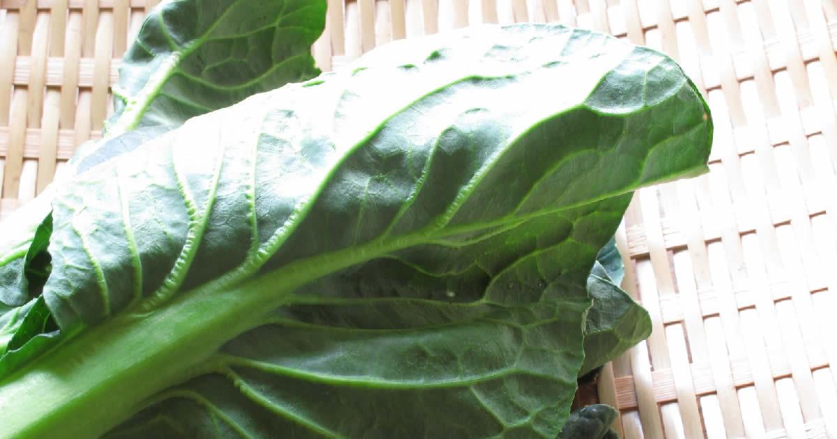 葉酸が豊富に含まれている小松菜